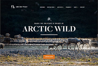 Travel Web Design Design Example